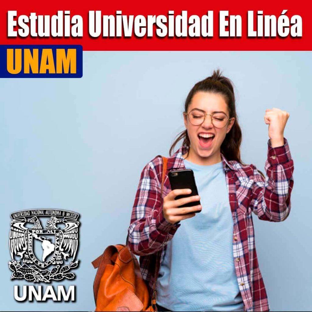 universidad abierta y a distancia en la UNAM